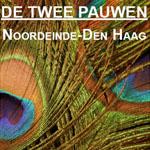 Galerie De Twee Pauwen