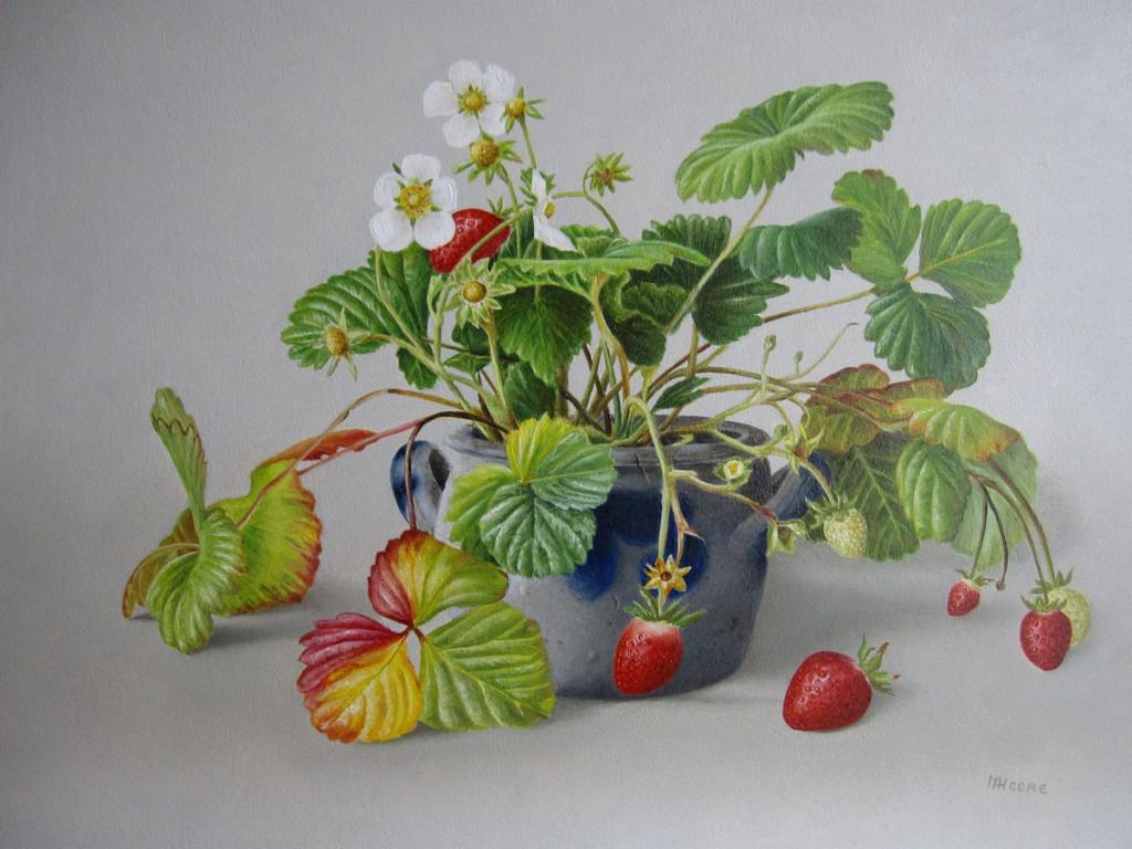 aardbeien in keuls potje